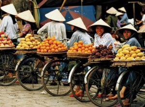 The local markets - Mui Ne, Vietnam | Kiterr.com